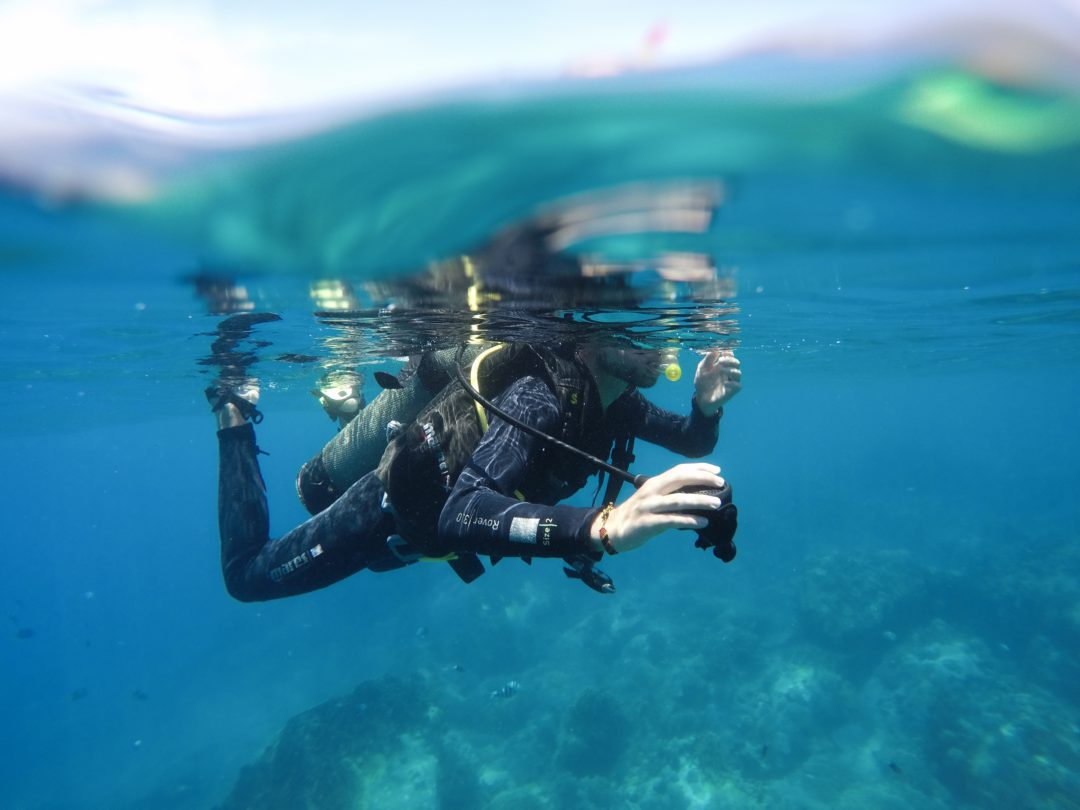 Getting A Padi Open Water Diving Certification In Vietnam That One